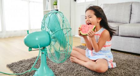Zile toride de vară. Află 5 trucuri pentru a-ți răcori locuința fără aer condiționat.