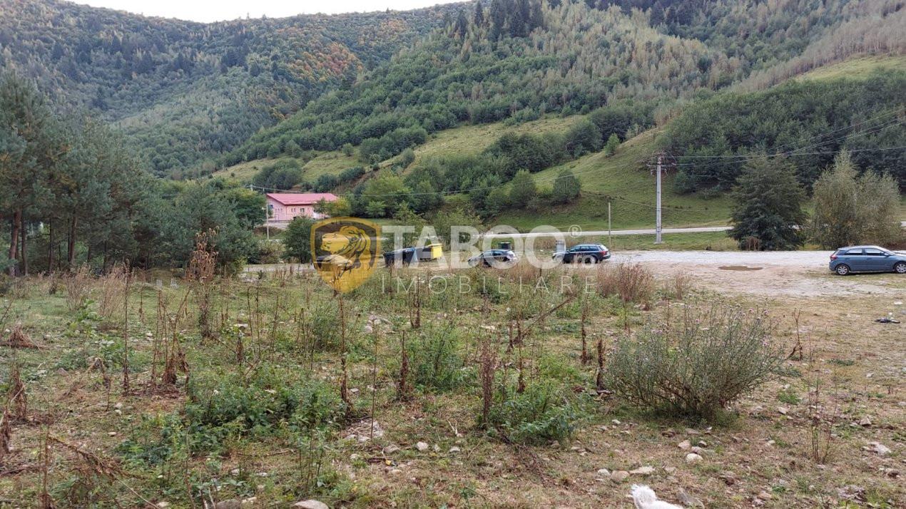 Teren intravilan 2100 mp deschidere 41 m de vanzare in Rasinari Sibiu 1