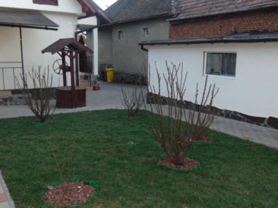 Casa individuala 134 mp un singur nivel 3 camere centru Selimbar Sibiu