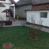 Casa individuala 134 mp un singur nivel 3 camere centru Selimbar Sibiu thumb 1