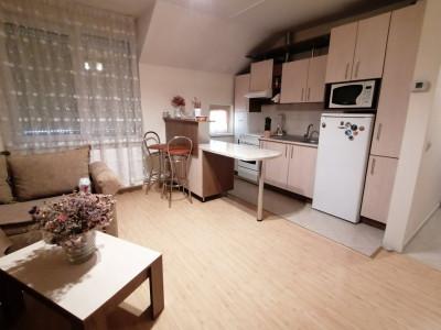 Apartament 2 camere de vanzare zona Vasile Aaron Sibiu