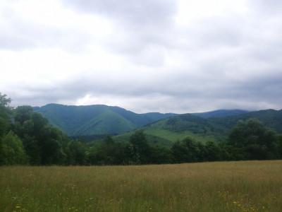 Teren intravilan 1,1 hectare de vanzare deschidere 105 m Tocile Sibiu