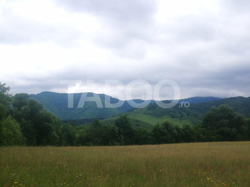 Teren intravilan 1,1 hectare de vanzare deschidere 105 m Tocile Sibiu 1