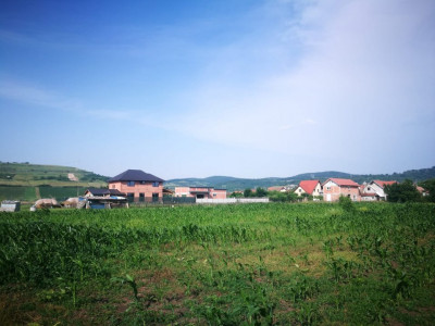 Teren intravilan 421 mp de vanzare Sibiu Gusterita 23 m deschidere