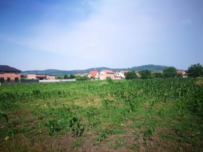Teren intravilan 475 mp de vanzare in Sibiu Gusterita deschidere 27 m