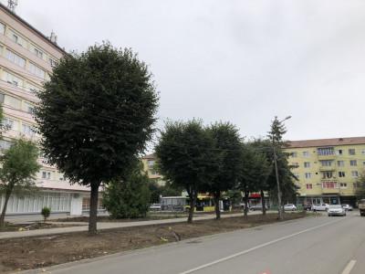 Apartament 49 mp utili 2 camere de vanzare zona Terezian Sibiu