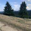 De vanzare teren in Paltinis de 1800 mp judetul Sibiu thumb 1