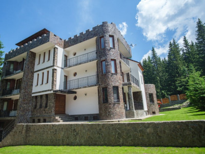 Castel de vanzare cu piscina interioara si 2700 mp teren in Paltinis