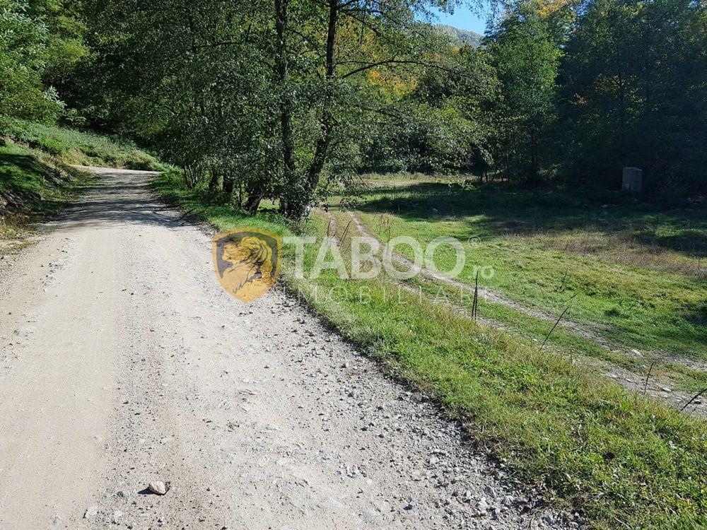 Teren de vanzare 2500 mp pentru cabane pe Valea Strungari 1