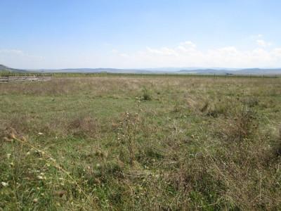 Teren intravilan 21500 mp de vanzare in Sebes judetul Alba