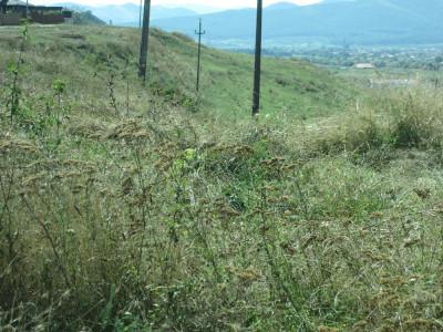 Teren extravilan de vanzare in Sebes zona Drumul Sibiului 16100 mp