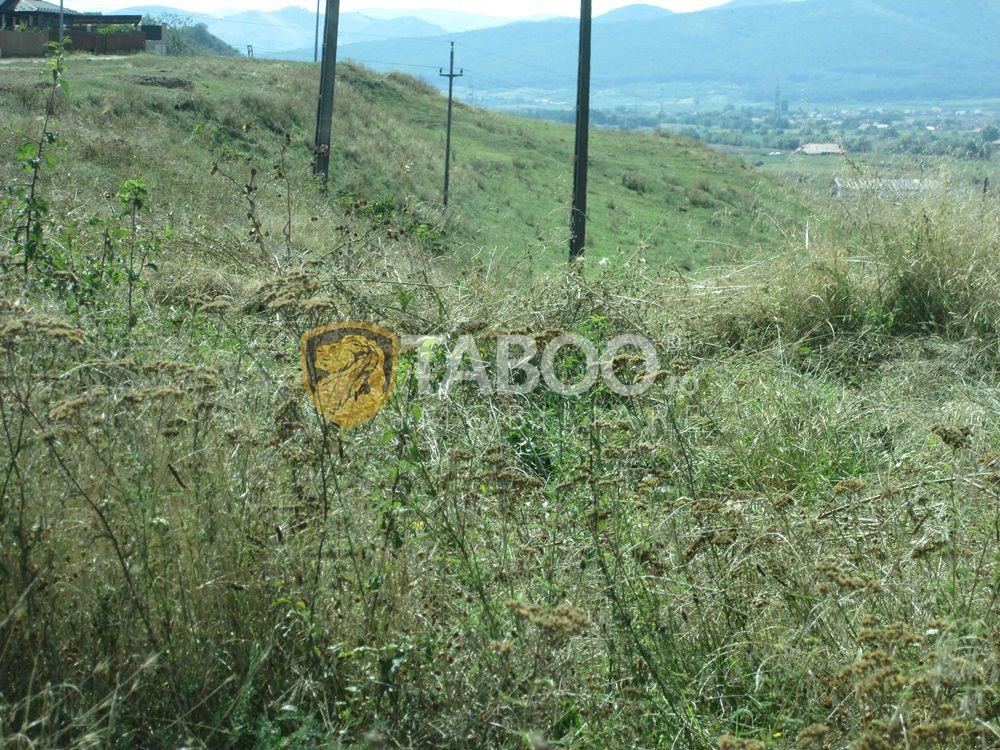 Teren extravilan de vanzare in Sebes zona Drumul Sibiului 16100 mp 1