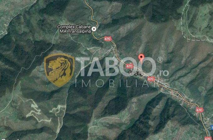 Teren intravilan de vanzare 2500 mp pe Valea Sebesului judetul Alba 1