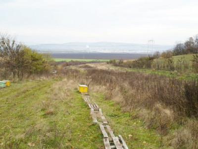 Teren intravilan arabil 9000 mp in Sebes judetul Alba