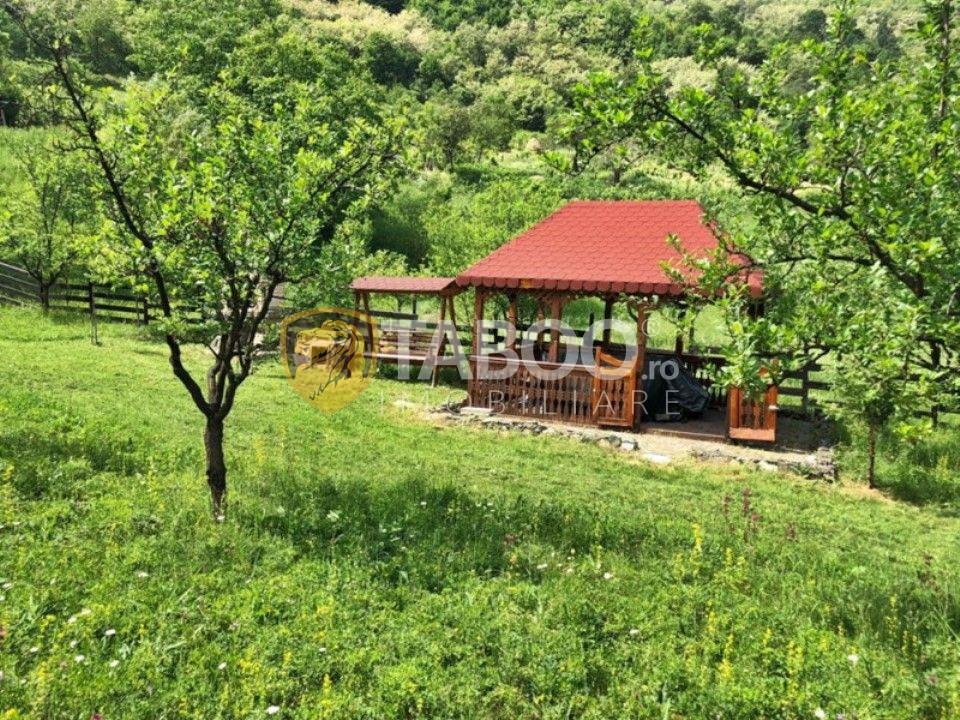 Teren extravilan 1036 mp de vanzare in Laz pe Valea Sebesului 1