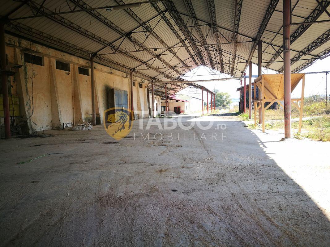Spatiu industrial cu hale acces tir si teren de 22624 mp 1